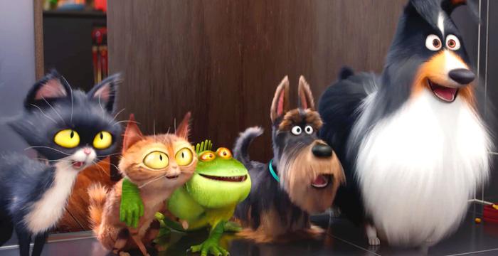 The secret life of pets 3