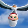 Storks 1