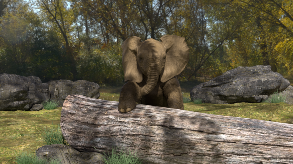 This image has an empty alt attribute; its file name is Elephant_only.0018-1024x576.png
